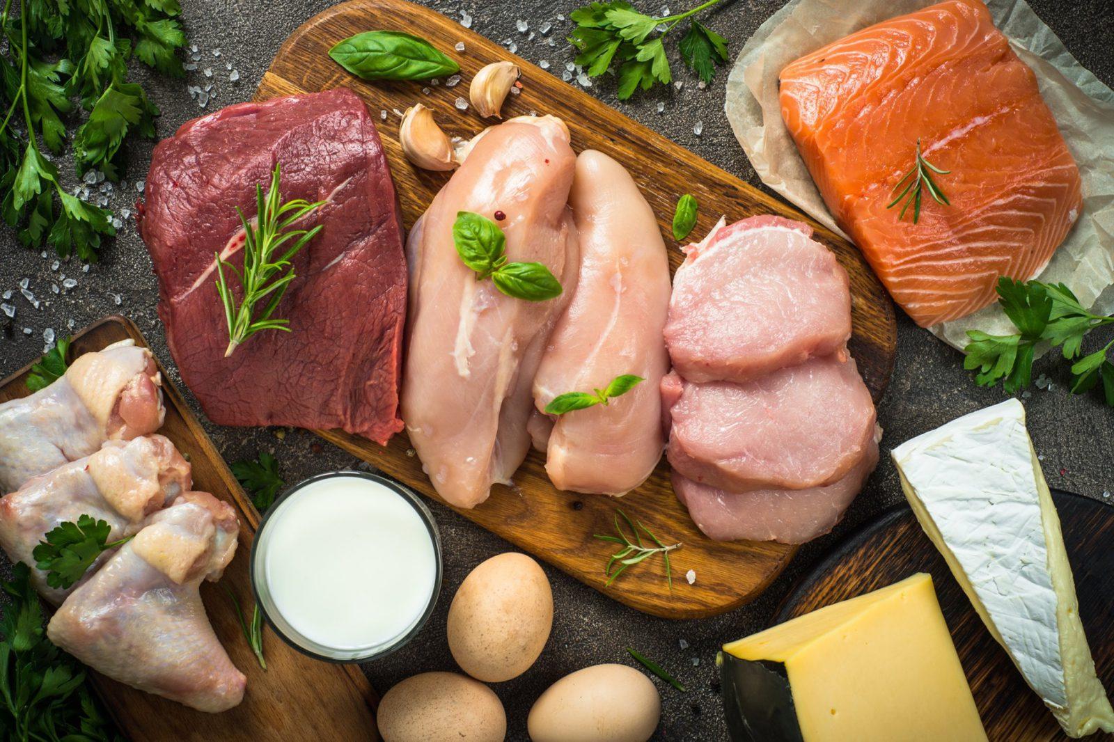 Comment les proteines aident a maigrir